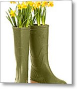 Wellington Boots Metal Print by Amanda And Christopher Elwell