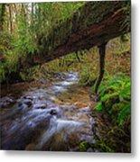 West Humbug Creek Metal Print by Everet Regal