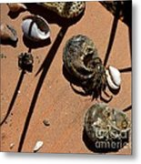 Which Is My Metal Print by Galina Khlupina