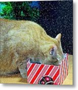 Whiskey's Present Metal Print by Diana Angstadt