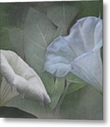 Whispers Of Angel Trumpet Datura Metal Print by Angie Vogel