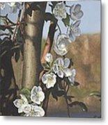 White Flowers Metal Print by Michele Renee