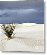 White Sands Dark Sky Metal Print by Bob Christopher