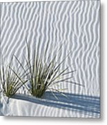 White Sands Grasses Metal Print by Steve Gadomski