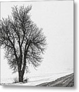 Whiteout Metal Print by Chris Austin
