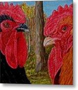 Who You Calling Chicken Metal Print by Karen Ilari
