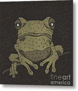 Who You Lookin' At ? Metal Print by Suzette Broad