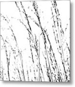 Wild Grasses Abstract Metal Print by Natalie Kinnear
