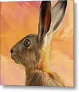 Wild Hare Metal Print by Tanya Hall