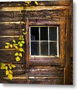 Window To The Soul Metal Print by Debra and Dave Vanderlaan