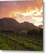 Wineland Sunrise Metal Print by Aaron S Bedell