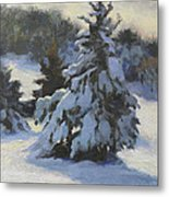 Winter Adornments Metal Print by Anna Rose Bain