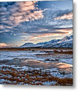 Winter Afternoon Metal Print by Cat Connor
