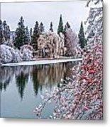 Winter Berries Metal Print by Nichon Thorstrom