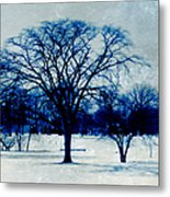 Winter Blues Metal Print by Shawna Rowe
