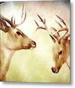 Winter Deer Metal Print by Bob Orsillo