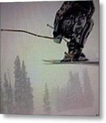 Winter Flight Metal Print by George Pedro