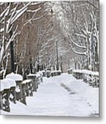 Winter Metal Print by Frederico Borges