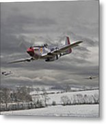 Winter Freedom Metal Print by Pat Speirs