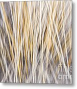 Winter Grass Abstract Metal Print by Elena Elisseeva