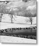 Winter In Kentucky Metal Print by Wendell Thompson