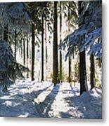 Winter Landscape Metal Print by Aged Pixel