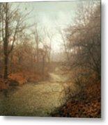 Winter Mist Metal Print by Jessica Jenney