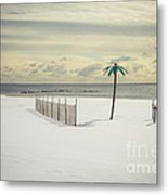Winter Paradise Metal Print by Evelina Kremsdorf