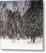 Winter Postcard Metal Print by Gwen Gibson