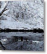 Winter Reflections Metal Print by Steven Milner