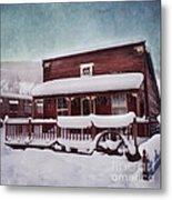 Winter Sleep Metal Print by Priska Wettstein