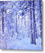 Winter Solace Metal Print by Tara Turner