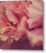 With A Fluttering Heart Metal Print by Laurie Search