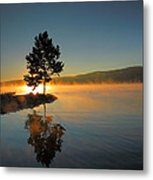 Witness To The Dawn II Metal Print by Steven Ainsworth