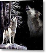 Wolf  Howling Memory Metal Print by Regina Femrite