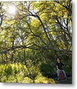 Woman Sitting On Bench - Bright Green Trees Sun Is Shining Metal Print by Matthias Hauser