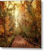 Woodland Light Metal Print by Jessica Jenney