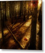 Woods With Pine Cones Metal Print by Meirion Matthias