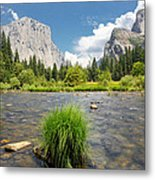 Yosemite Metal Print by Jerome Obille