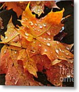 You Waited For Me To Fall Metal Print by Catherine Reusch  Daley