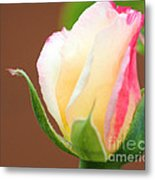 You've Touched My Heart Metal Print by  The Art Of Marilyn Ridoutt-Greene
