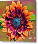 Orange Flowers In Their Buttonholes Metal Print by Gwyn Newcombe