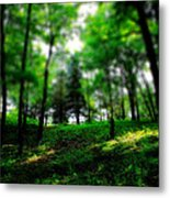 Simply Spring Metal Print by Bob Orsillo