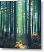 The Green Ray Metal Print by Paul Grand
