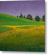 A Sliver Of Canola Metal Print by David Patterson