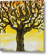 Allah's Name In A Tree Metal Print by Felicity LeFevre