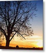 Bare Tree At Sunset Metal Print by Skip Nall