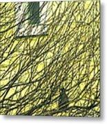 Branch Office Metal Print by Joe Jake Pratt