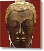 Buddha's Pleasure Metal Print by Allan Rufus