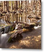 Cibolo Creek Metal Print by Paul Huchton